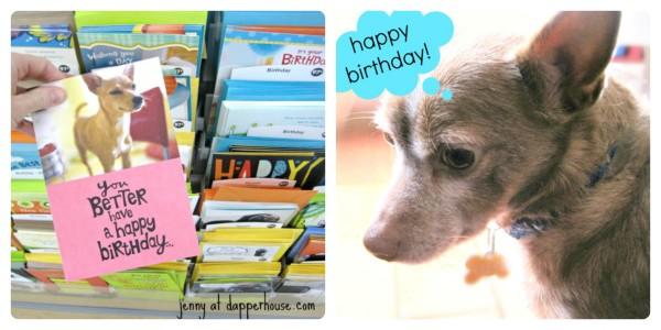 Brithday card looks like my dog Reese! Hallmark Rewards Walmart Value Cards @dapperhouse #ValueCards #shop #cbias