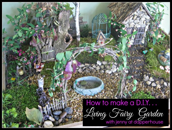 How to make a D.I.Y. Fairy Garden with jenny at dapperhouse