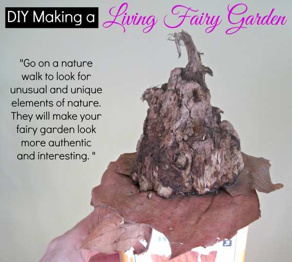 Find unique elements of  nature to make your fairy garden more interesting @dapperhouse DIY