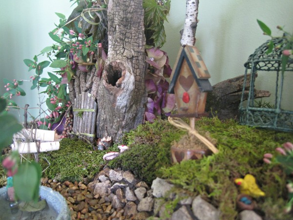 How to make a Living Fairy Garden jenny at dapperhouse