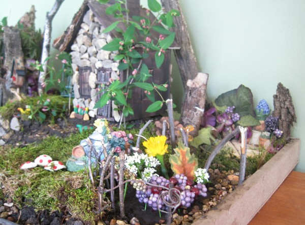 See how to make a living fairy garden for fun with jenny at dapperhouse