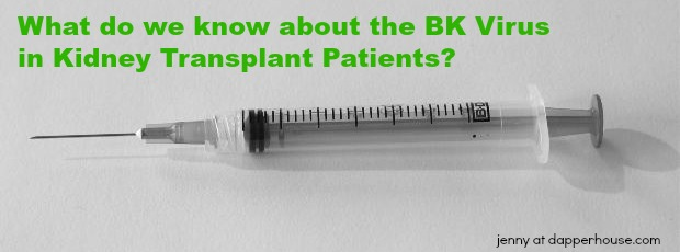 What do we know about the BK Virus in Kidney Transplant Patients - jenny at dapperhouse #kidney #disease #rare #IGA