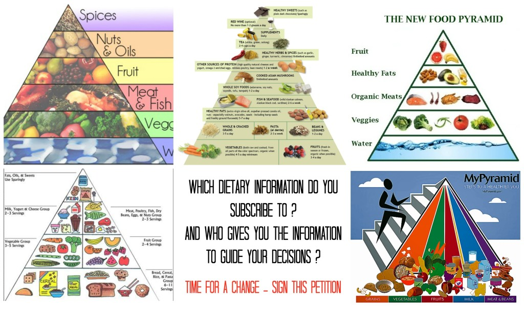 food pyramids and US guidelines - sign a petition for science based knowledge in Americas Health