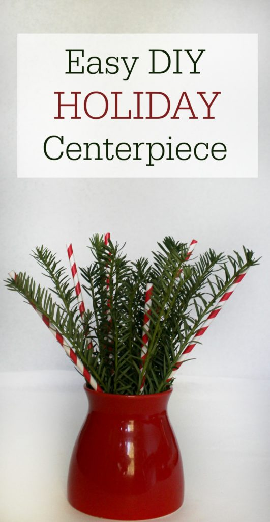 Easy Last Minute DIY Holiday Centerpiece - jenny at dapperhouse blog