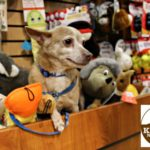 Get Your Holiday Pet Essentials at Kriser's Natural Pet Stores