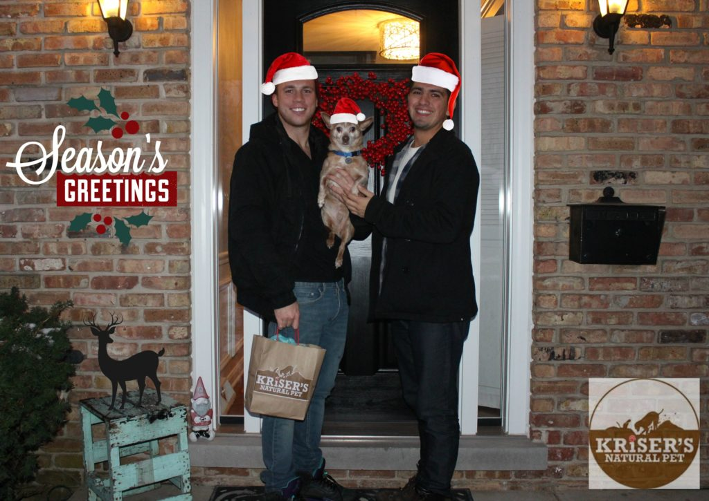 seasons-greetings-from-jenny-at-dapperhouse-blog-reese-the-dog-holidaysatkrisers-kriserspets-ad