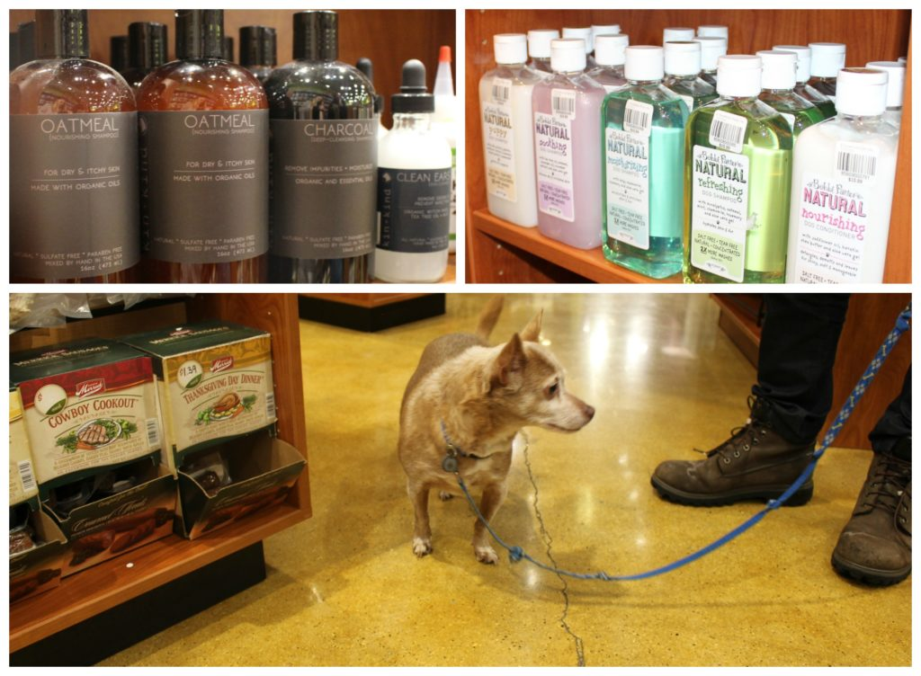 the-best-skin-and-hair-care-for-your-dog-holidaysatkrisers-kriserspets-jenny-at-dapperhouse-blog