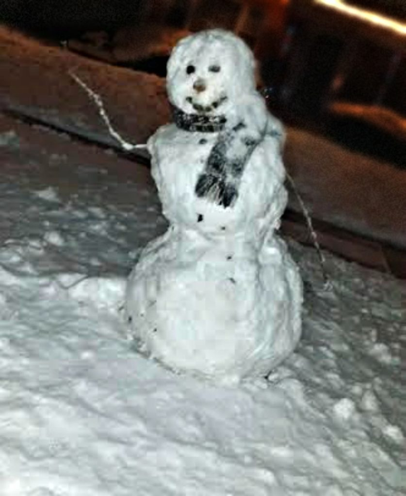 snowman-from-jenny-at-dapperhouse-blog