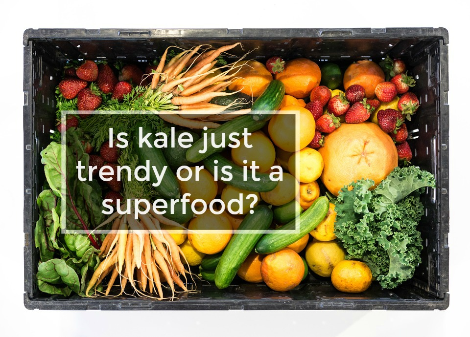 Is eating kale everyday good for you