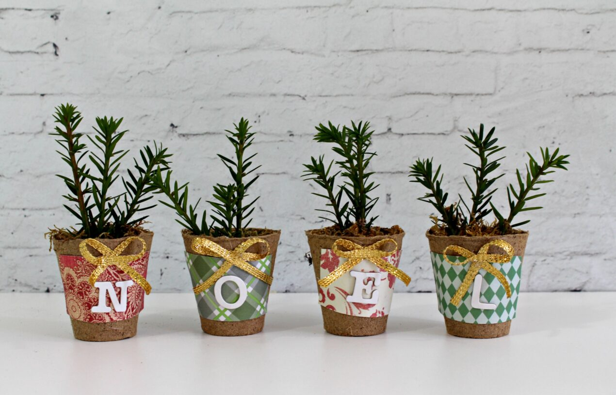 """Decorative """"NOEL"""" Pots with Holiday Evergreen Sprigs"""