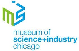 Summer Brain Games with the Museum of Science and Industry Chicago