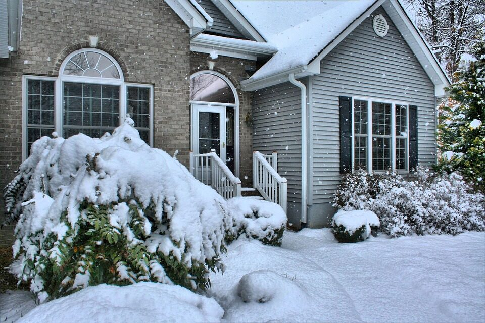How to Prepare Your Trees and Lawn for Winter
