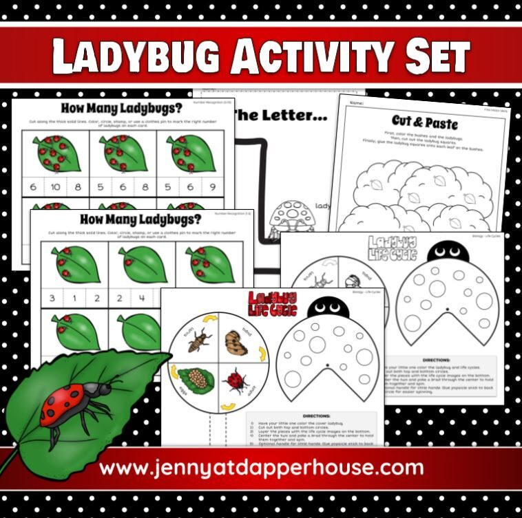 Free Printable Ladybug Themed Themed Worksheets for Kindergarten – 1st Grade